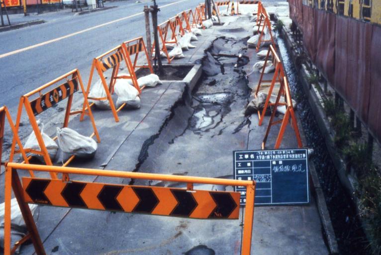 Sanriku-haruka-oki Earthquake (1994)